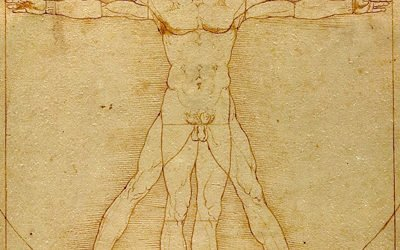 Le asimmetrie nella panca piana: assecondarle o curarle?